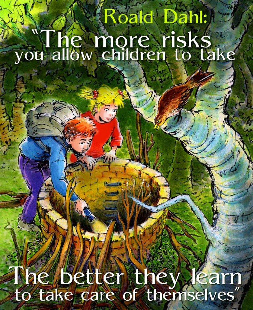 Roald Dahl quote, the more risks you allow children the better they learn to take care of themselves, bos, toverput
