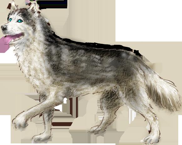 husky hondje, wapper, kleuter en peuter verhaaltje, bewegend prentenboekje, online voorlezen