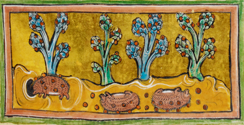 egel-middeleeuws
