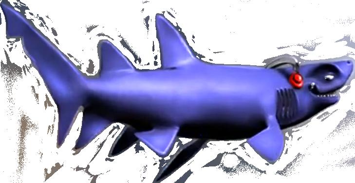 haai, Eric van Tilburg