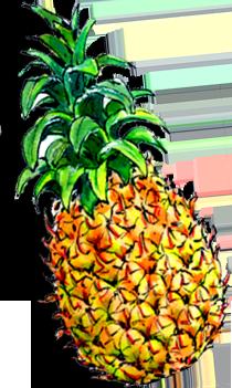 ananas! digitale prentenboeken / kinderverhalen voorlezen online gratis
