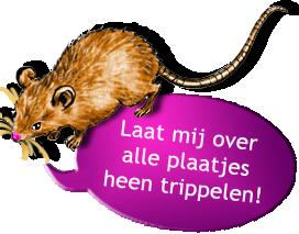muis bruin