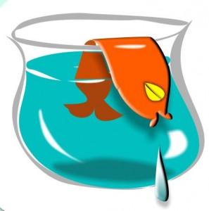 goudvis, mini verhaaltjes voo kinderen online gratis