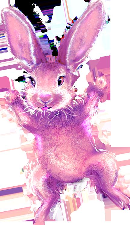 paars konijn, wapper, bewegend prentenboekje, hondje met drie oren, online gratis voorlezen