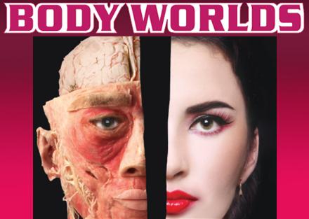 body worlds, anatomie voor kinderen, ontleedkunde van het menselijk lichaam, ana en tomie