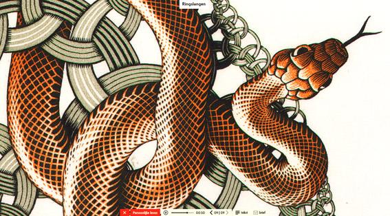 M.C. Escher, Metamorfose, interactieve metamorfose site, ontdekken met Escher, Escheriaanse ingslangen