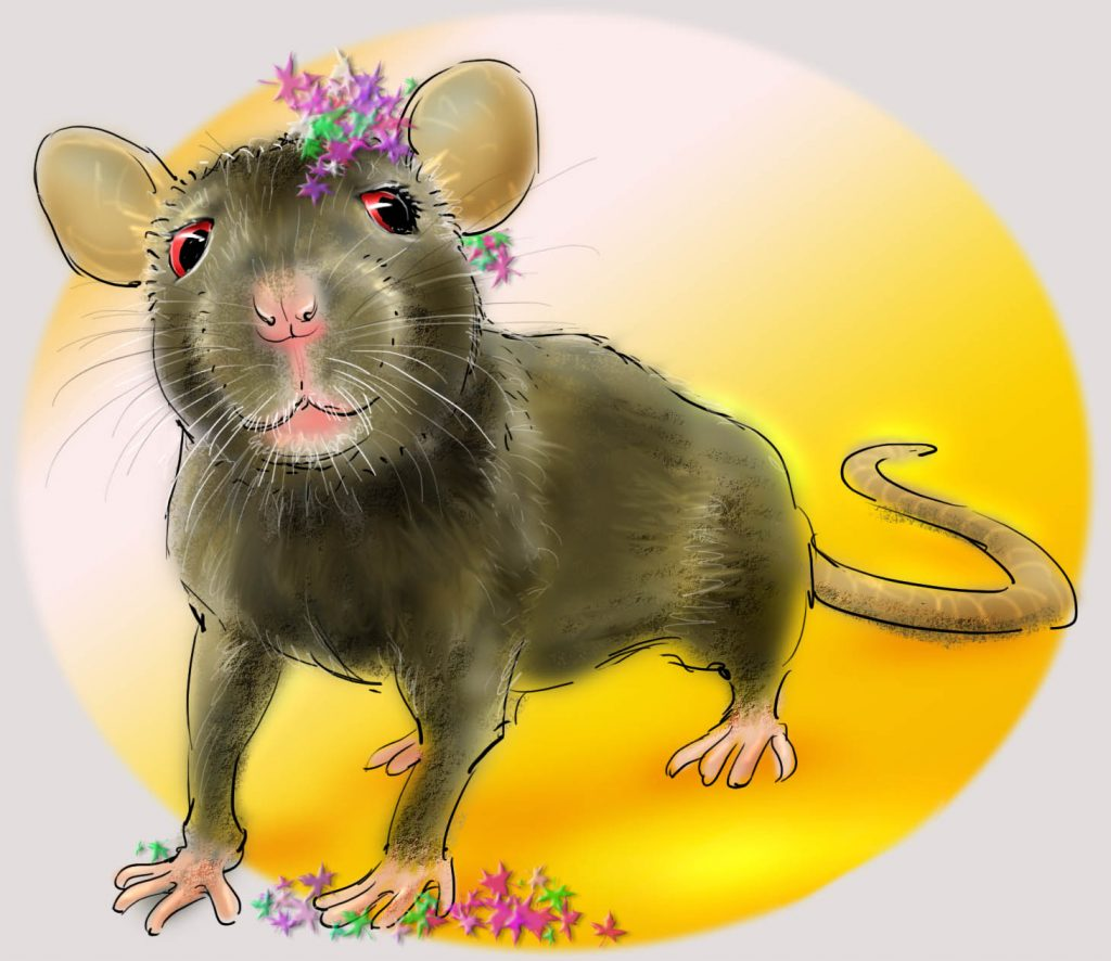 het krioelt in mokum, amsterdam, dieren fabels, bruine rat, jeannette moning, kinderverhalen
