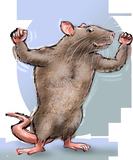 jeannette moning, amsterdamse dieren fabels, grote gespierde rat, Basiel