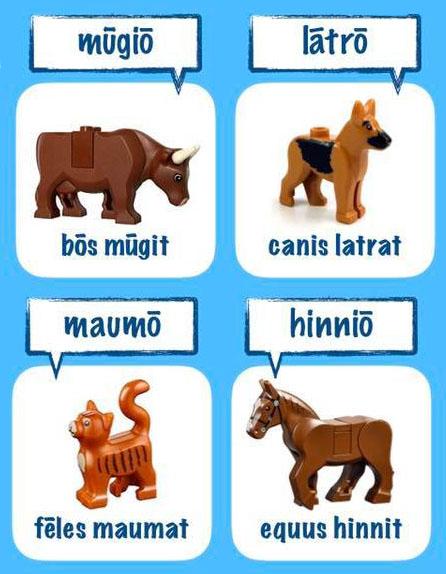 Legonium, learning Latin with Lego, Anthony Gibbins